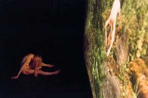 «Parc national», création d'Anne Delahaye et Nicolas Leresche, 2015
